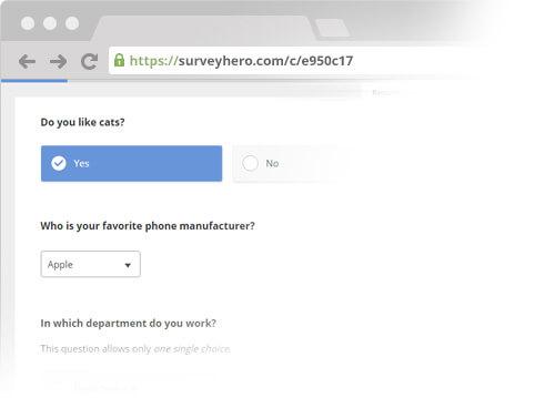 Example Survey